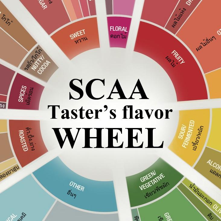 SCAA-FlavorWheel-crop