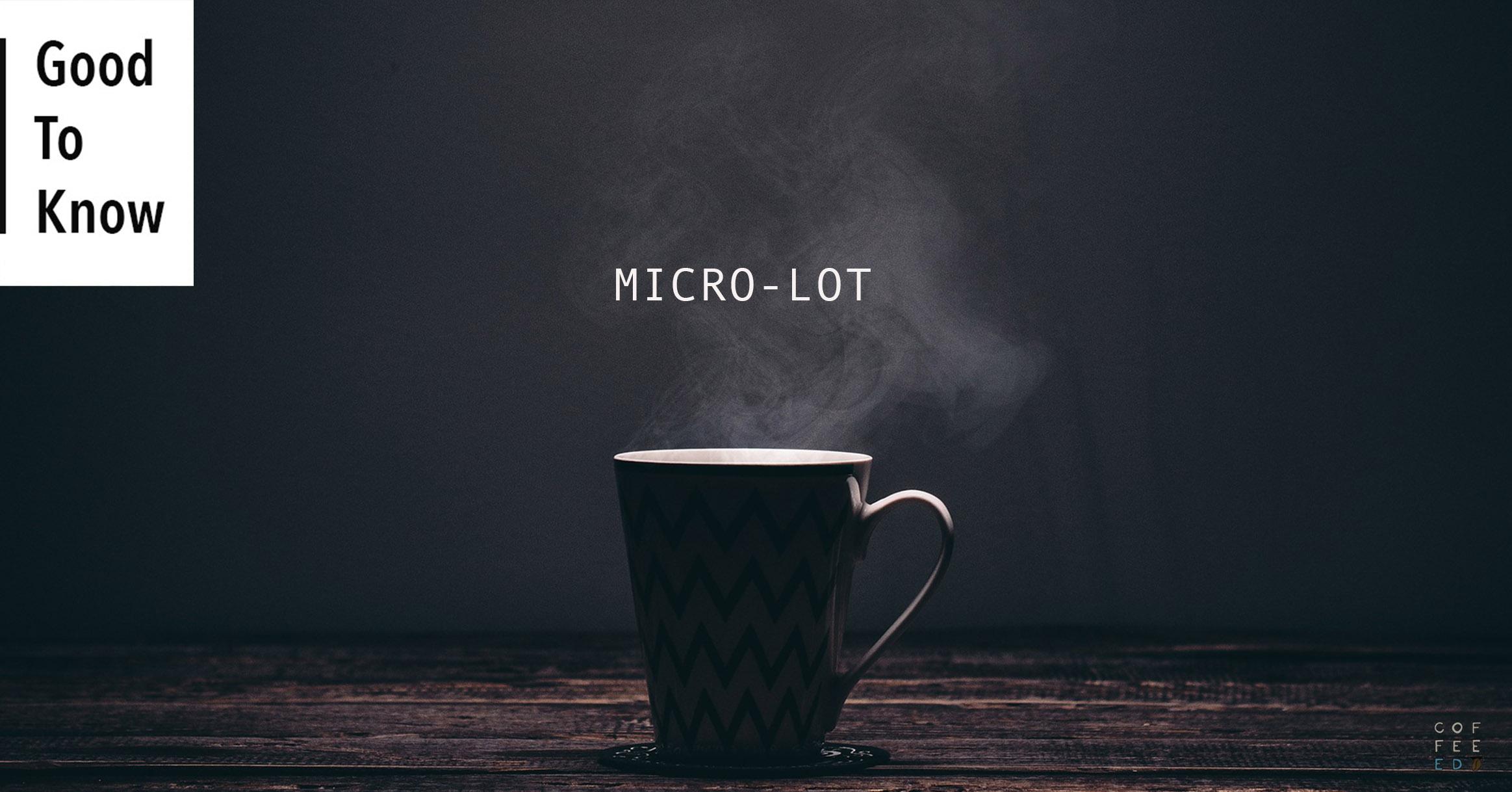 MicroLot-1