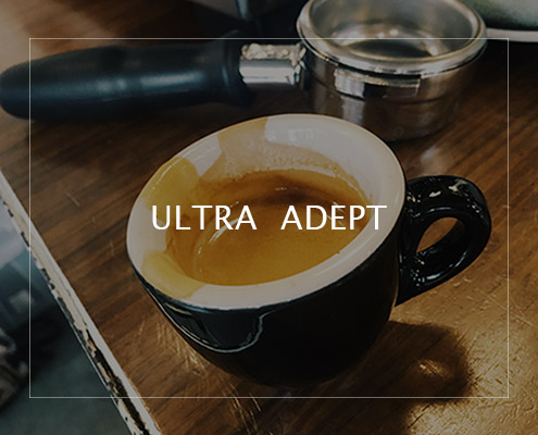 33_Ultra Adept